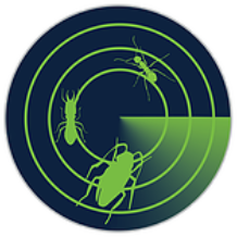 Radar Pest Control | Sunshine Coast